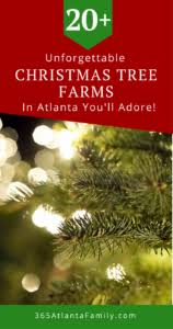 These Unforgettable Atlanta Georgia Christmas Tree Farms Will Help You To Have A Holiday