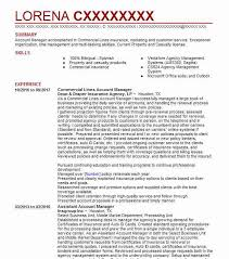 Commercial Lines Account Manager Resume Sample