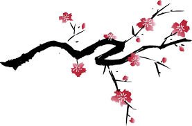 2383x1568 15 Black and White Cherry Blossom pilation Black And 2699x3527 Best Cherry Clipart
