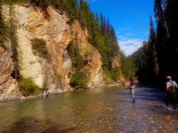 100 River Valley Truck Outfitters Trophy Bull Trout Fishing In British Columbia Canada