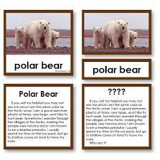 Riddle Stories Arctic Mammals
