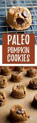 Paleo Pumpkin Chili Turkey by Paleo Pumpkin Cookies With Dark Chocolate Chips Hungry By Nature