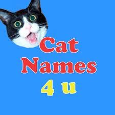 cat names cat names 4 u catnames4u