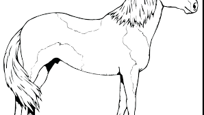 Spirit Horse Coloring Pages Race Page Free Printable Animals The And Rain