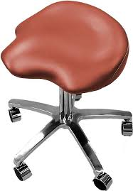 Dental Hygiene Saddle Chair by Surgeon Dentist Saddle Stool Ascot S