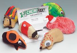 make a mole u2014hands on student activity kit