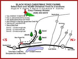 Santa Cruz Ca Christmas Tree Farms by Locations Black Road Christmas Tree Farms