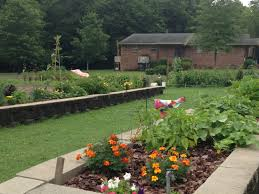 It s Not Too Late Plant a Fall Ve able Garden At The Happy Hill