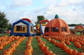 Real Pumpkin Patch Dfw by The Flower Mound Pumpkin Patch Texas Haunted Houses