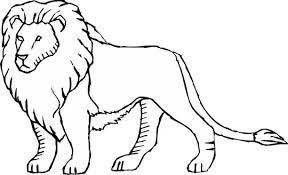 Lion Coloring Pages Digital Art Gallery