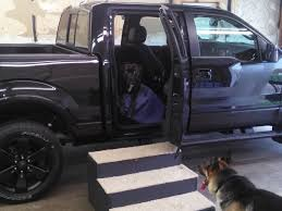 100 Dog Truck Ramp How Do You Take Your Dogs With You Ford F150 Forum Community Of