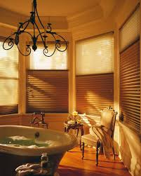 Plants For Bathroom Feng Shui by Feng Shui Bathroom Messagenote