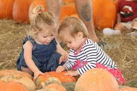 Sarasota Pumpkin Festival 2017 by No Squashing Their Fun At Hunsader Farms East County Your Observer