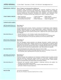 Here Are Sales Professional Resume Sample Territory Manager
