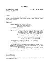 Job Developer Resume Template Singular Project Manager Web Development Free Software Description