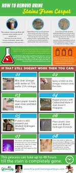 carpet cleaning las vegas 89 1 greenway tile upholstery cleaners