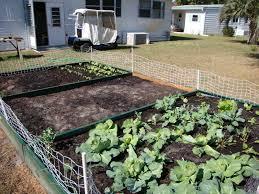 Florida ve able gardening