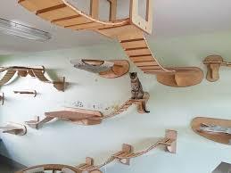 transformer une pièce en aire de jeux pour chat 2tout2rien