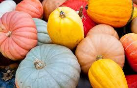 Haitian Pumpkin Soup Tradition by 34 Ways To Eat Pumpkin U2013 Iowa Source