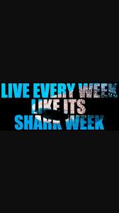 Hammerhead Shark Pumpkin Stencil by 93 Best Sharks Images On Pinterest Sharks Shark Costumes And