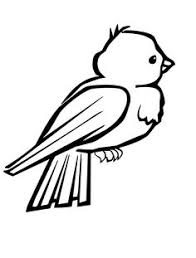 Small Birds Are Cute And Attractive Coloring For Kids