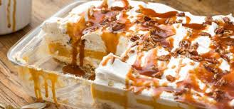 Pumpkin Layer Cheesecake by How To Make Decadent Pumpkin Cheesecake Lasagna Tiphero