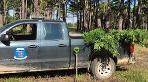 Game Wardens Uproot Illegal Marijuana Grow Site In Delaware Co ... 2017 Ford F150 Ssv Game Warden Police Truck Youtube 2010 State By Tr0llhammeren On Deviantart Lore Friendly San Andreas Skins Department Of Fish The Worlds Best Photos Gamewarden And Truck Flickr Hive Mind Texas Wardens Head To Florida Help After Irma Nbc 5 Dallas 2016 Nissan Titan Xd Turbodiesel V8 Is The Super Duty Exceeds Driving Expectations Catching An Illegal Trapper North Woods Law Suv Crashes Into Game Wardens Us Route 7 Rutland Herald Skin Pack 8 Vehicles Vehicle Twitter Stay Safe Dont Risk Wardenforest Serviceus Wildlife For Slicktop Silverado