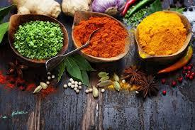 rinkus indische küche startseite