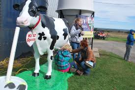 Woodside Pumpkin Festival by Fall Events On Dairy Farms That You Don U0027t Want To Miss Dairy Spot