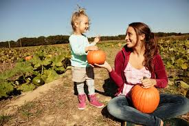 Pumpkin Picking Farms In Maryland by Pumpkin Patches In Maryland And Northern Virginia 2017