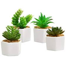 Amazon MyGift Set of 4 Artificial Succulents in White Ceramic