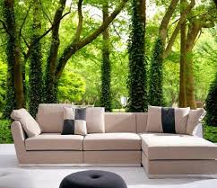 Wall Mural Decals Nature by 13 Best Wall Murals Images On Pinterest Wall Stickers Wall