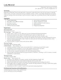 Personal Statement Resume Nurse Summary Experience In Examples Here Are For Sample Perso Trainer Ideas