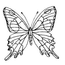 Butterfly Free Printable Coloring Page Lesson Printables And Pages For Kids