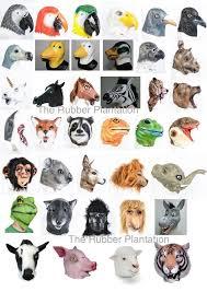 Grants Farm Halloween 2014 by Best 25 Halloween Ideas On Pinterest Party Animal Costume