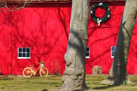 Yellow Bike, Red Barn – Expat Photographer Motorcycle Mania Bills Old Bike Barn Houses One Mans Vast Timeless And Personal Fall Wedding At The Ruins Kellum Valley Red Road News Reviews Photos Madison Bcycle On Twitter On The Last Day Of My Bike 303 Best Vlos Femmes Images Pinterest Famous Men Florence Oshd Revolving Museum Bikes Fitness 2017 Pedal 509 Cycles Green Bay Wisconsin Fatbikecom Specialized Riprock Expert 24 Review By Andy Amstutz Ebay Honda Big Red Trx 300 Classic Farm Quad Atv 4x4 Barn