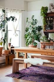 gemütliches esszimmer mit viele pflanzen die schatten