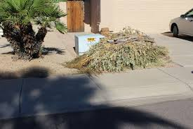 Chicago Christmas Tree Recycling by Recycling And Trash Bulk Collection