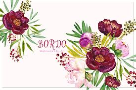 Peony Bordeaux Watercolor Clip Art By LABFcreations