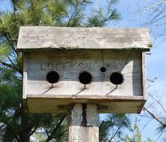 Image Of Rustic Birdhouses Designs