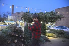 Fresh Cut Christmas Trees At Menards by What Christmas U0027tree Cession U0027 Articles News Oakpark Com