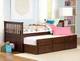 Furniture Mesmerizing Zachary Twin Bed With Trundle And Storage