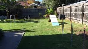 DIY Dog Agility Course Set Up For Border Collie 1st Birthday Party ... Backyards Excellent 9 Burkes Backyard Pets Amazing Pet Rare Woolly Dog Hair Found In Northwest Blanket Q13 Fox News Agility With Australian Cattle Youtube Welsh Springer Spaniel Wikipedia How To Stop Dogs From Pooping On Your Front Lawn Dog Do It Yourself Diy Set Hurdles Jumps Gardener And Tv Personality Don Burke 3 Masters Sequences Annotated Bordoodle Pinterest Breeds Pechinez Awesome 25 Best Ideas About Outdoor Kennels On