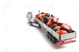 100 Toy Truck And Trailer Carrying Oil Palm Fruitlets Stock Photo Picture