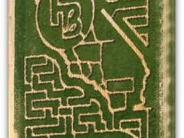 Pumpkin Patch Farm Temecula by Annual Corn Maze Pumpkin Patch U0026 Harvest Festival Temecula Ca