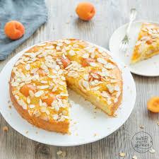 saftiger aprikosenkuchen
