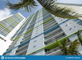 100 Miami Modern Beach Skyscraper With Palms Stock Photo Image Of