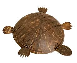 Cute And Attractive Coconut Shell Tortoise