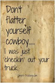 100 Truck Sayings Driver Quotes Drivers Quotes And Quotesgram
