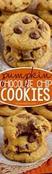 Libbys Great Pumpkin Cookies best 25 pumpkin chocolate chip cookies ideas on pinterest